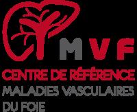 Logo MVF ok